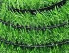 学校幼儿园体育操场塑胶跑道橡胶地垫EPDM施工室外人工草坪