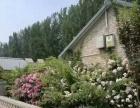 阳光庄园超大房屋63平米,依山傍水,独门独院 休闲、度假、