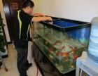 昆明鱼缸换水 定期投食 鱼缸定做