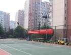 金水区专业 游泳 网球 培训班...