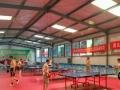 肥城乒乓球爱好者协会