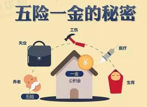 专业代缴社保,住房公积金,报销生育险