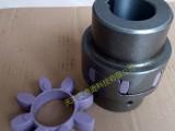 德国KTR ROTEX 38 GG25铸铁梅花联轴器