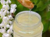 新鲜洋槐蜂蜜纯天然农家自产槐花蜜洋槐蜜野生原生态蜂蜜42波美度