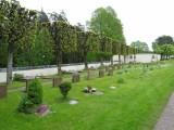 天津公墓服务中心 植树葬 植树葬 植树葬