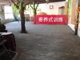 省内 庄园式训犬学校 吉诺宠物庄园训练 寄养预定