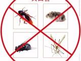 广州市专业除老鼠公司,老鼠可恶至极,上门灭鼠杀虫除四害