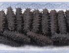南京市回收冬虫夏草回收阿胶回收燕窝回收海参