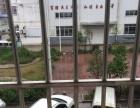 大平山镇文化广场(市场附近)