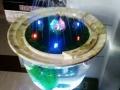 大理石景鱼缸加湿器