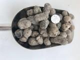 济源陶粒济源卫生间回填陶粒济源园林绿化陶粒