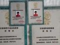 国家、厂家双重认证,权威钢琴调律、整体大修调琴