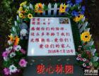 成都愛心林園寵物遺體專車接送殯葬服務