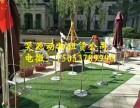 广州传媒指定萌宠租赁代理商昊源动物租赁