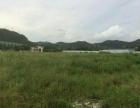 平沙 平沙镇 土地 20000平米
