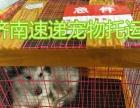 济南速递宠物托运 广州 深圳 珠海 厦门 直达航班
