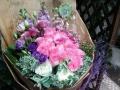 专业花艺制作、鲜花、盆栽绿植、值得信赖、来电详谈