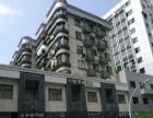市中心5房才4100清楚五四路宏利大厦附近单位房2楼居家办公