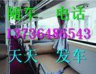 从嘉善直达到南阳的汽车13736486543客车时刻表