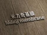光油 基膜丨基膜需要刷几遍丨基膜墙纸-米力奇糯米胶