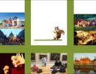 美之旅 法国艺术游学 与众不同