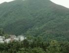 梅岭 风景优美的山林出租