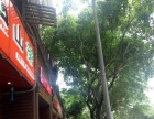解放碑商圈中心带技术货源奶茶冷饮店转让