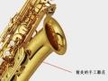 雅马哈中音萨克斯YAS-200DR 6180元