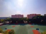 美術高考班 東藝高中 6.5折降分上大學