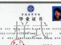 宁大自考、四川农大、陕师大、中南大学、东财、电子科技专、本科