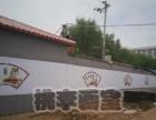 桃李画室墙体彩绘机构