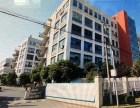 诚售104地块独幢6层厂房5445平50年产证可环评可落户