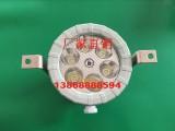 反应釜防爆LED视孔灯 BSD96系列射灯