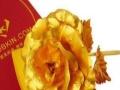 金玫瑰加盟火爆招商中!
