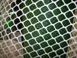 厂家现货直销贵州塑料养殖网  pe塑料平网  鸡鸭养殖围网