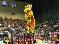 厦门专业舞龙舞狮队