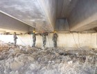 中太桥梁养护 厂家 供应圆形橡胶支座 公路桥梁支座