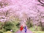 皇家经典婚纱摄影(中国总店) 全球旅拍价格表