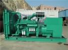进口发电机出租,租赁 二手发电机回收,维修