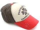 外贸服装配饰韩版男女棒球帽热卖 棒球帽帽子亲子帽OEM定制