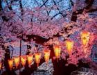 日本明治維新的教育改革--上海美知靠譜日本留學中介服務