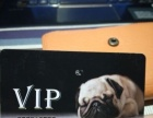宠物店VIP卡5折转让