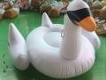 东莞市峰云塑胶制品有限公司批量供应火烈鸟PVC充气玩具