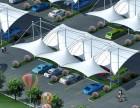 膜结构车棚 停车棚 膜结构公司 车棚 屋顶