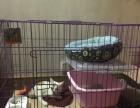 转自用二手猫笼