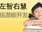 左智右慧幼儿教育加盟