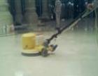 专业清洗地毯、pvc板打蜡本人从事清洁服务十多年