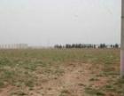东营经济技术开发区50亩土地出售 政府主导