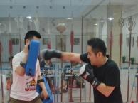 上海少儿武术暑假培训班/儿童暑期学跆拳道/散打搏击