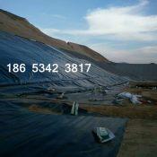 0.5毫米鱼池护坡防渗膜每平米价格
